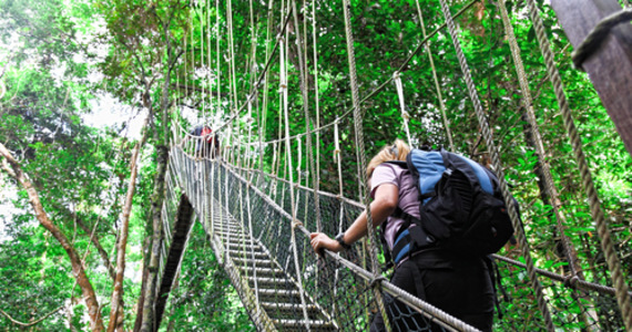 From September, the opening of Malaysia's borders to foreign tourists has been limited