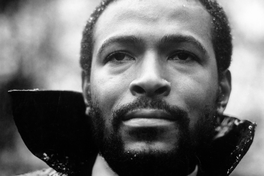Marvin Gaye    What happens 50 years later?