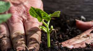BASF restricts fertilizer production in Europe.  Prices are going up