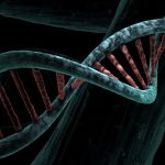 Corona Virus.  Scientists select genes that can provide resistance to COVID-19